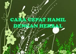 Kumpulan resep jamu herbal alami untuk kesuburan agar cepat hamil