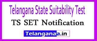 TS SET Notification