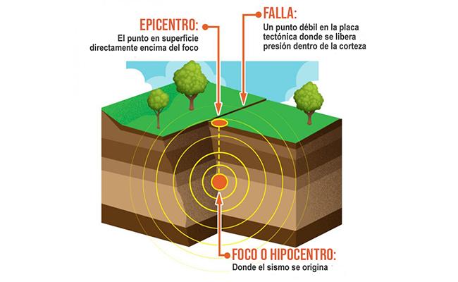 El hipocentro o foco en la zona en el interior de la Tierra donde se inicia la ruptura de la falla, es ahí donde se origina el terremoto o sismo. El Epicentro es el punto en la superficie terrestre situado directamente encima del hipocentro o foco.