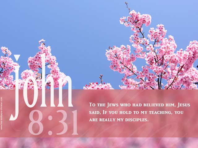 Inspirational Bible Quotes Wallpapers