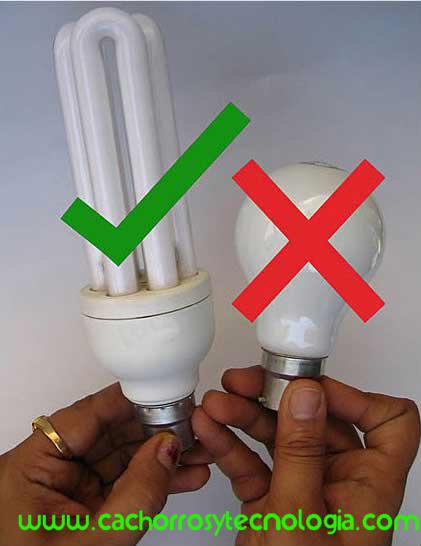 lampara led dañina ahorradoe confiable retina enfermedad www.cachorrosytecnologia.com shurkonrad 1