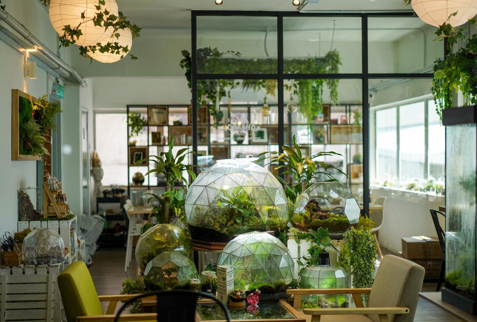 mossarium lifestyle cafe, damansara uptown