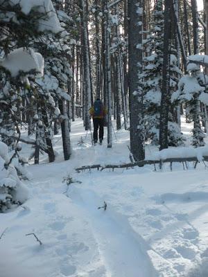 Ski Goose Creek, Bozeman