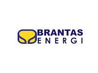 PT Brantas Energi - Penerimaan Untuk Posisi Business Development Mgr, HR Mgr Brantas Abipraya Group September 2019