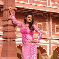 Sneha in saree photo gallery