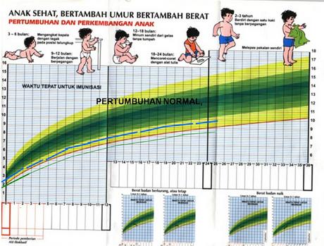Tahap Pertumbuhan Serta perkembangan Bayi, Balita dan Anak-Anak