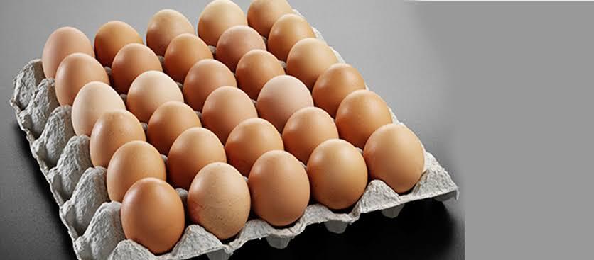 سعر البيض في البورصة اليوم مصر 2021