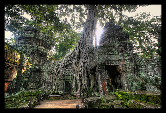 Siem Reap - Cambodge - Temple du Ta Prohm (CC)