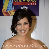 Sophie chaudhary at the zee cine awards 2013