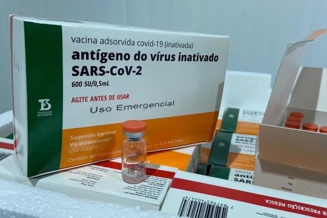 Novo lote de vacinas contra a covid-19 começa a ser distribuído nesta quinta-feira (13)