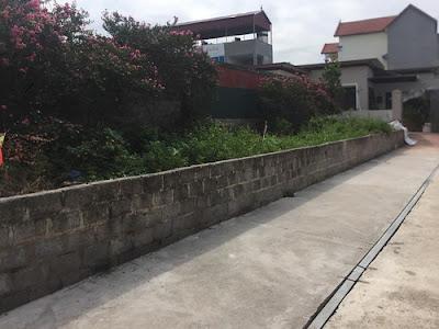 Giá nhà đất Văn Giang