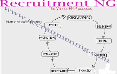 Human Resource Management (Business Plans and Feasibility Study for any Business)