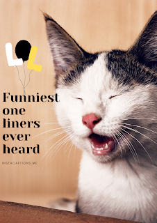 funniest one liners ever heard   101 + best one-liners of all time I InstaCaptions