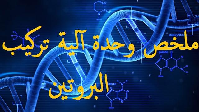 ملخص وحدة  آلية تركيب البروتين