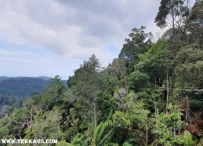 Penang Hill The Habitat Beautiful Scenery
