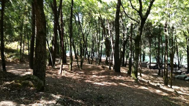 Zona de Sombra do parque de Merendas