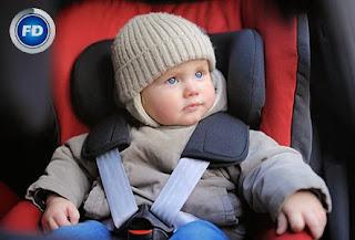 Fénix Directo Seguridad sistemas Retención Infantil