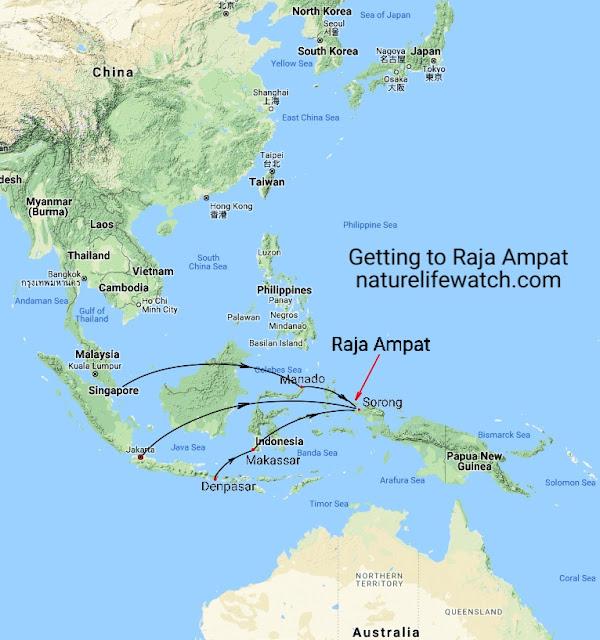 Flight routes to Raja Ampat
