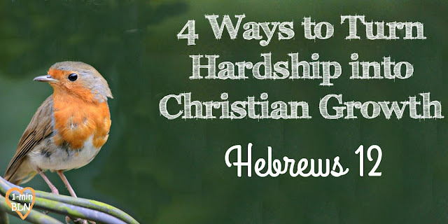 4 Ways to Turn Hardship into Christian Growth - Hebrews 12