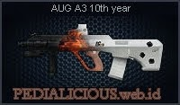 AUG A3 10th Year