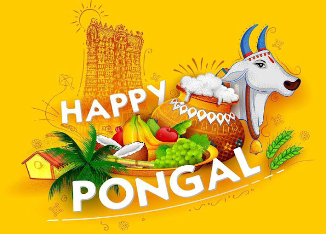 pongal sun festival in india