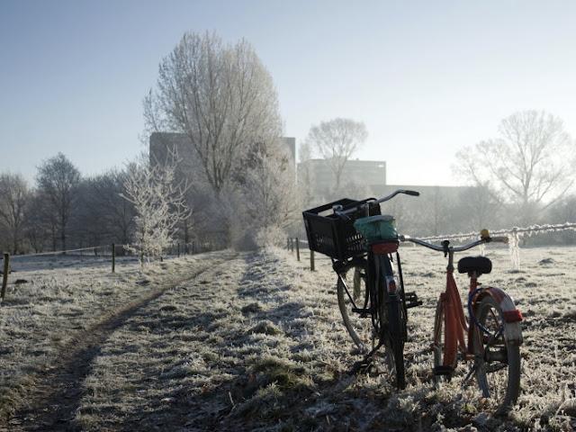 Andar de bicicleta em Eindhoven, Holanda