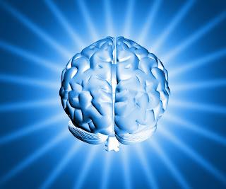 Brain Executive Function