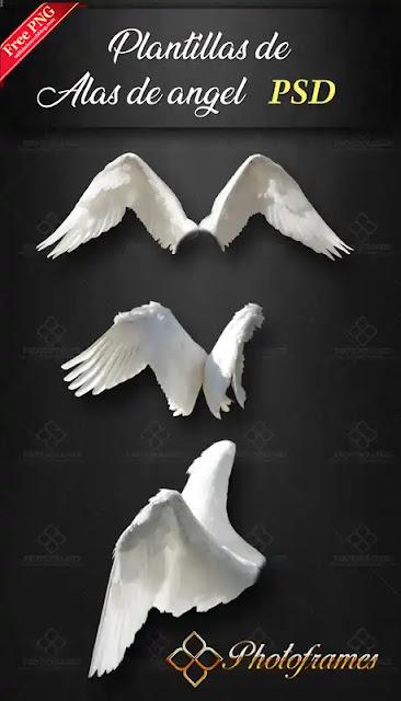 plantillas de alas de ángel realistas