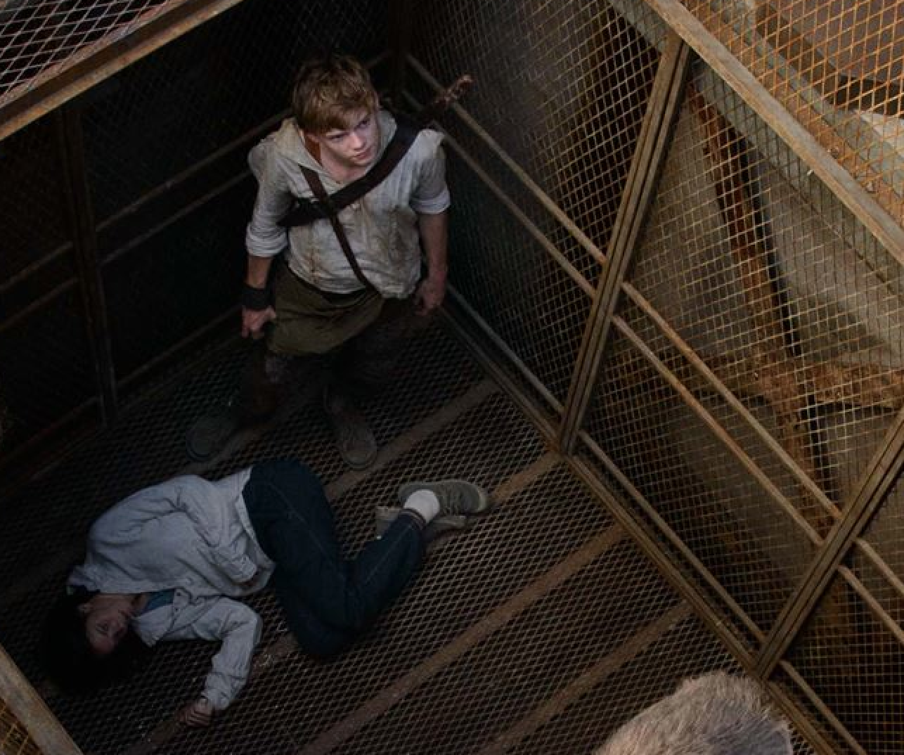 That Blog That Chick Wrote: The Maze Runner