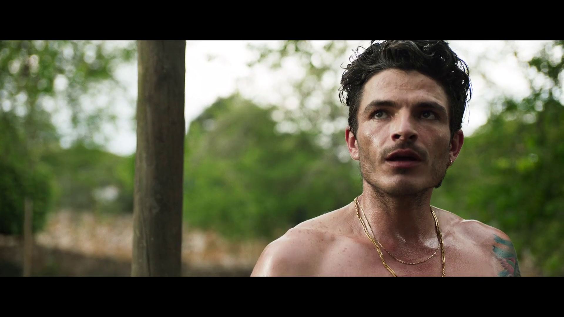 Lavaperros (2020) 1080p WEB-DL Latino
