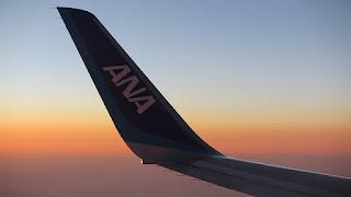 طرف الجناح في الطائرة
