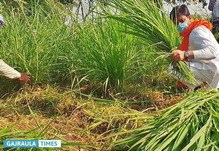 rajeev-tarara-farmer-photos