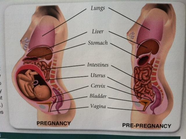 Baby Foleys Nine Month Chronicle February 2012-4992