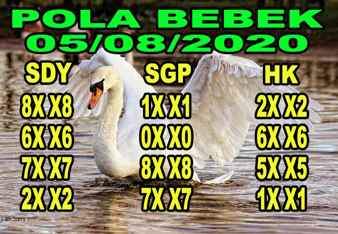 syair sydney pola bebek 5 agustus 2020
