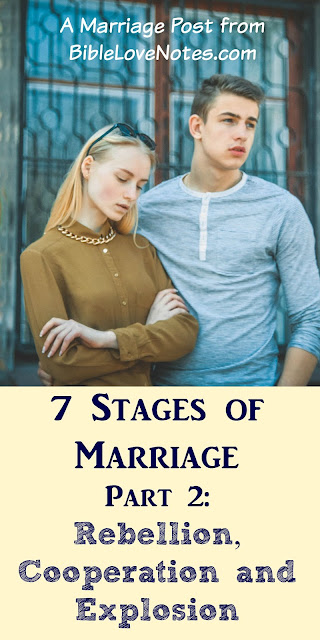 7 Stags of Marriage, Part 2: Rebellion, Cooperation, Explosion