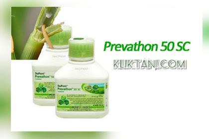 Insektisida Prevathon 50SC, Obat Sundep padi paling TOKCER