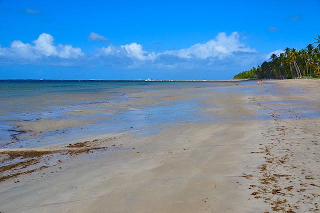 O paraíso selvagem - A Praia de Carneiros