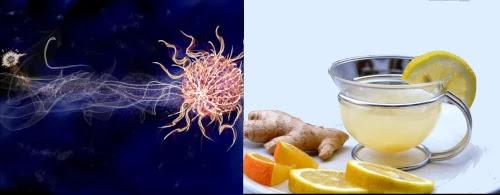 طرق صحية لتقوية جهاز المناعة لديك