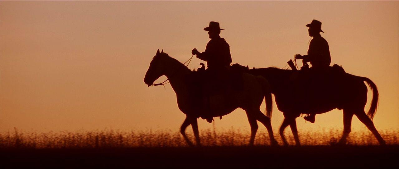 La aportación del Western a la cultura popular y a las artes  cinematográficas es ampliamente reconocida. Para hacerse una idea del género  basta echar una ... a944954f27c