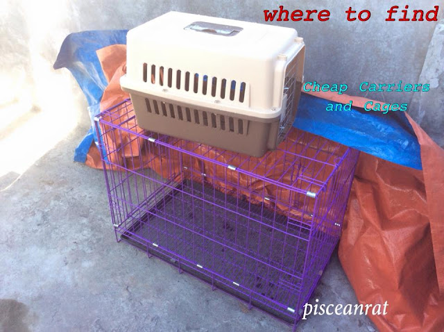 Where to Buy Cheap Animal Carriers and Cages in the Philippines!