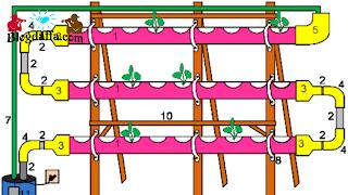 Membuat Rangka Hidroponik Paralon