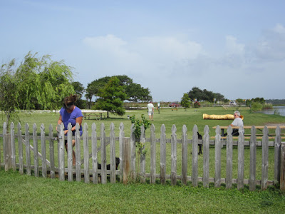 Gulf State Park dog park