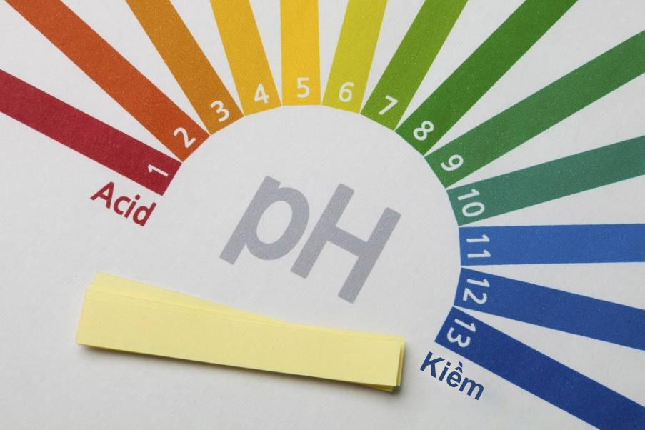 Độ pH của da và sản phẩm chăm sóc da là yếu tố cơ bản và gần như cốt lõi trong Skincare