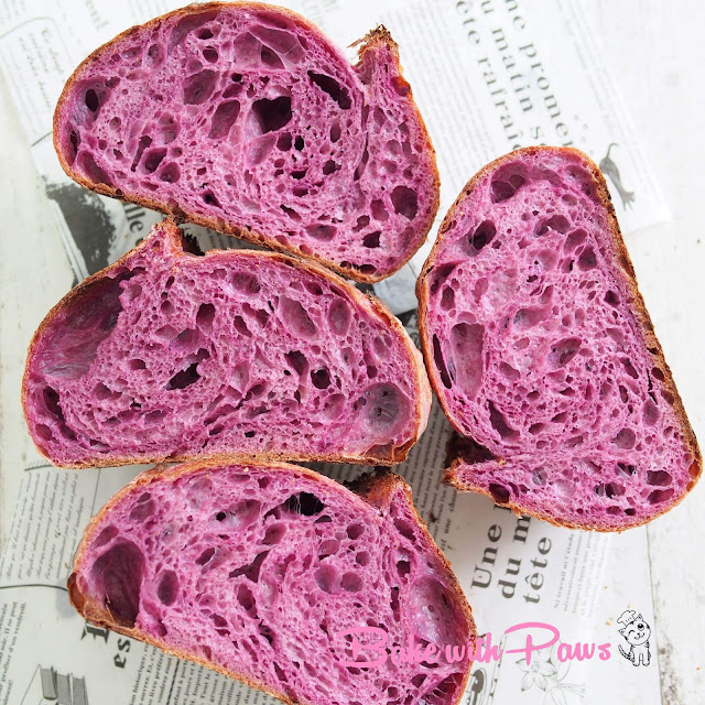 Purple Sweet Potato Open Crumb Sourdough Bread