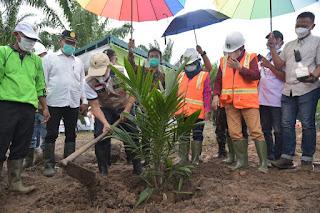 Bupati Batu Bara Hadiri Penanaman Perdana Kelapa Sawit