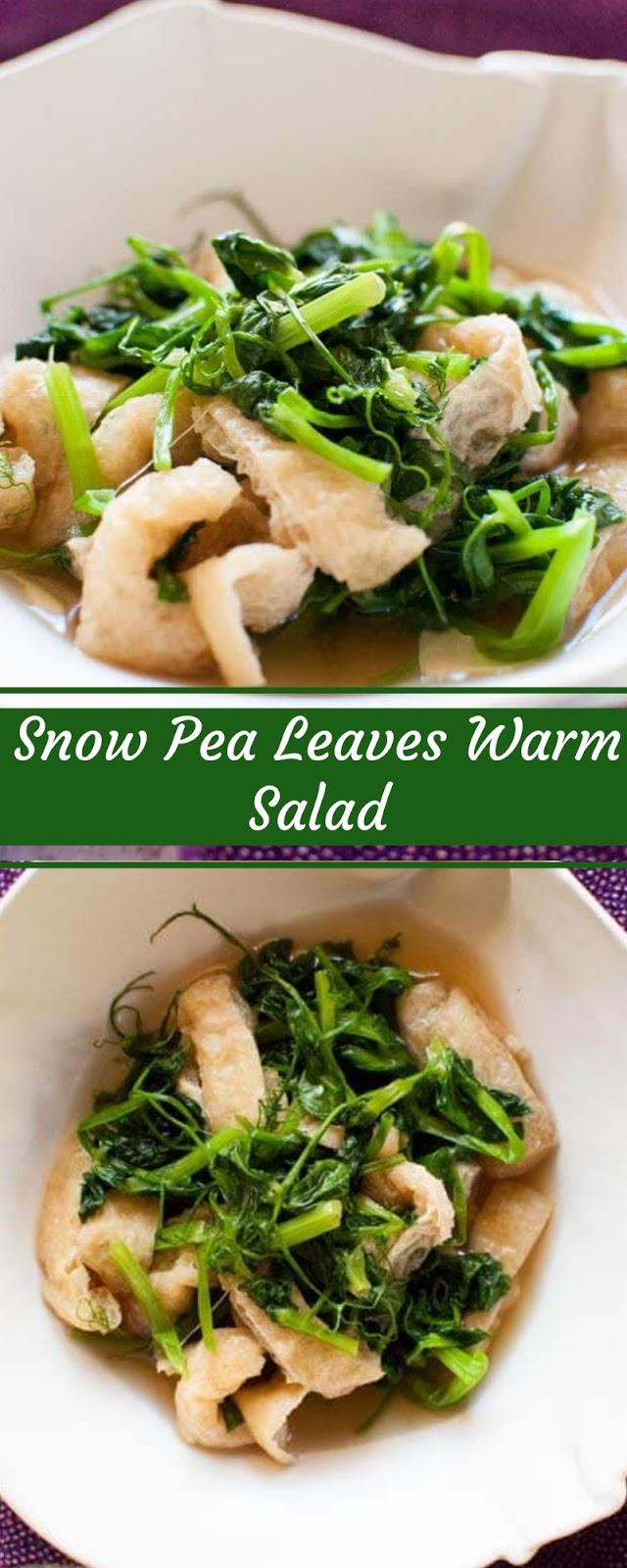 Snow Pea Leaves Warm Salad