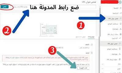 7 حلول فعالة لتجنب مشكلة عدم طهور المدونة في نتائج البحت