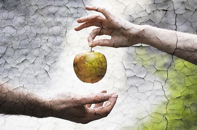 ¿Cuál era el fruto prohibido del árbol del conocimiento del bien y el mal?