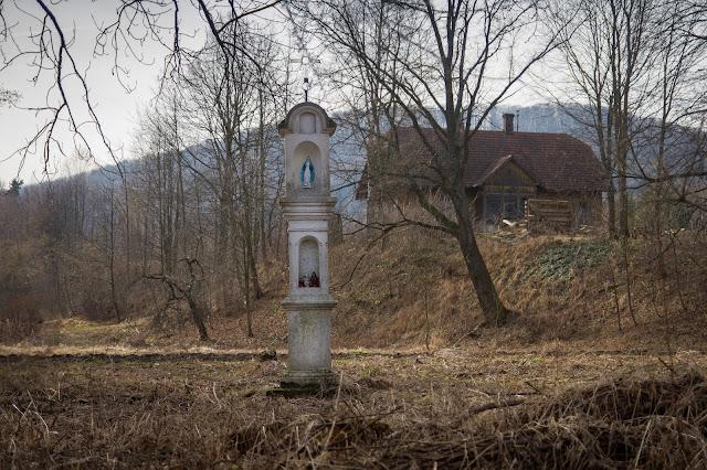 Szlachetna moc Paczki | Dziennik Polski