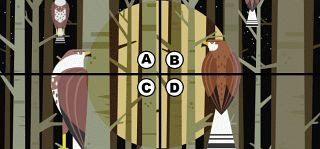Spot the Owl Quiz Answers 2021